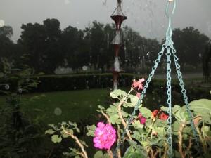 rainchainhammock 003
