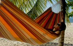 Barbados Sunset Hammock