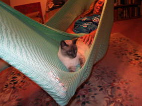Sea foam crochet hammock with Lady Hamaca and Spirit the Cat