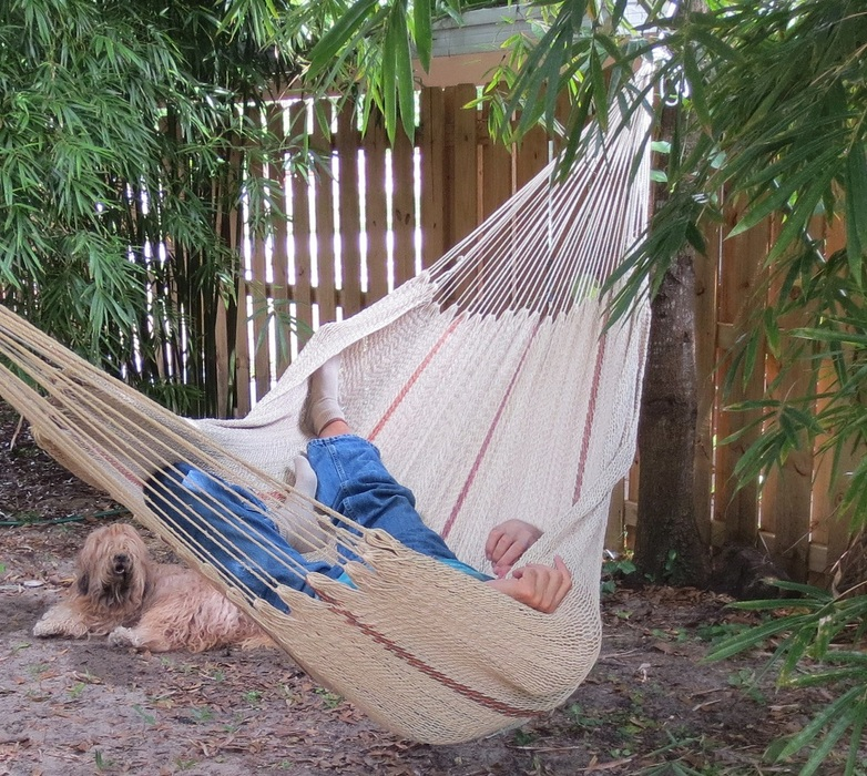 company hammock boone sheltowee grande com shell hammocks collections