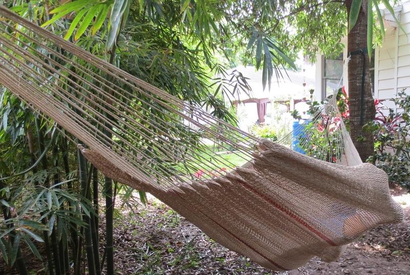 Moriche hanging