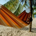 Barbados Single Hammock