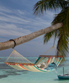 Colada--2 person all weather bar hammock